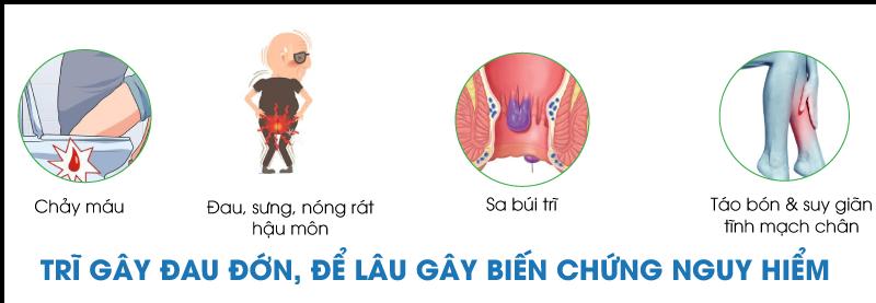 vien-giap-ca-trix-trieu-chung (2)