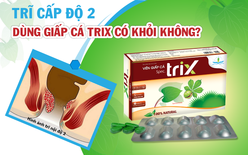 tri-cap-do-2-dung-vien-giap-ca-trix-co-khoi-khong